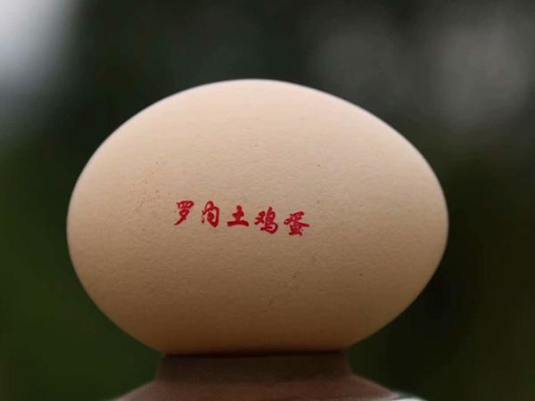 新万博manbetx体育app下载土鸡蛋