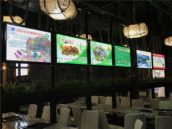 新万博manbetx体育app下载生态餐厅